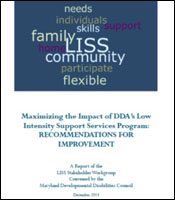 Cover for the 2013 LISS Report