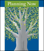 Cover for the Planning Now Report